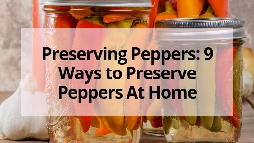 Preserving Peppers: 9 Ways to Preserve Peppers At Home