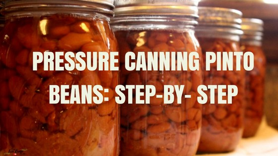 Pressure Canning Pinto Beans Step-By- Step