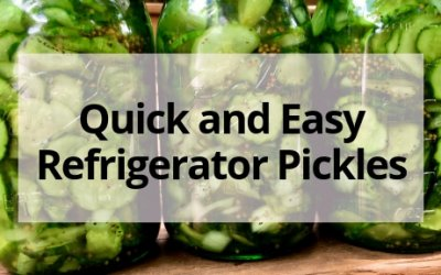 Quick and Easy Refrigerator Pickles!