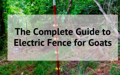 The Complete Guide to Electric Fence for Goats