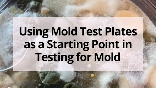 Using Mold Test Plates as a Starting Point in Testing for Mold