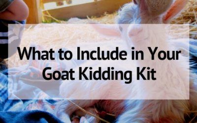 The Kidding Kit: Everything You Need for Goat Kidding