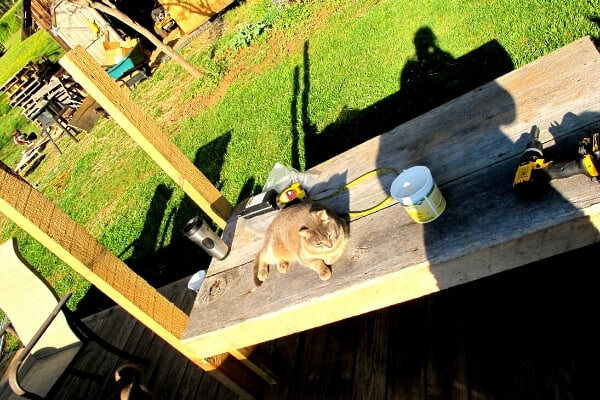 a DIY milk stand being built with scrap wood
