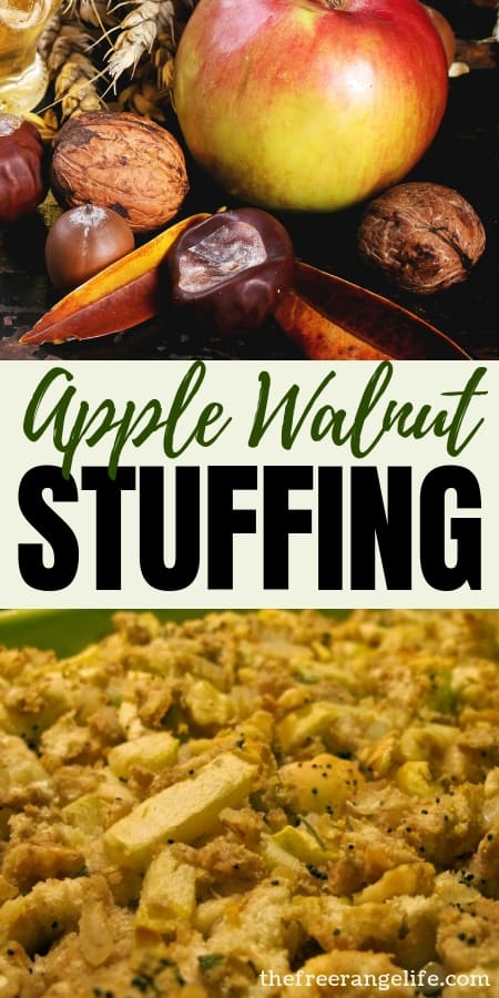 Holiday Recipes: Wow your family this holiday season with this savory and delicious Apple Walnut Stuffing recipe!