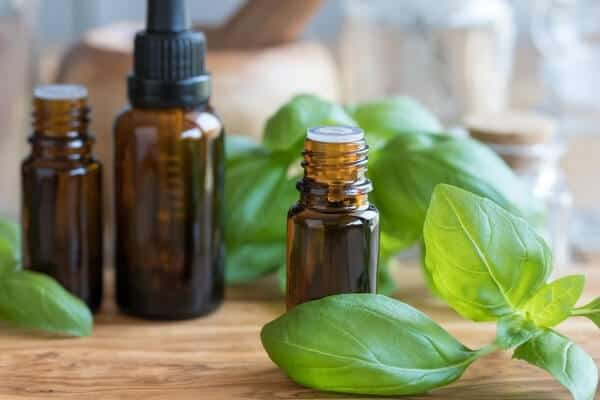 brown essential oil bottles with fresh basil leaves on a table