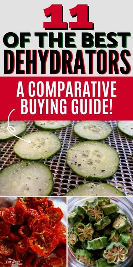 11 of the best dehydrators a comparative buying guide