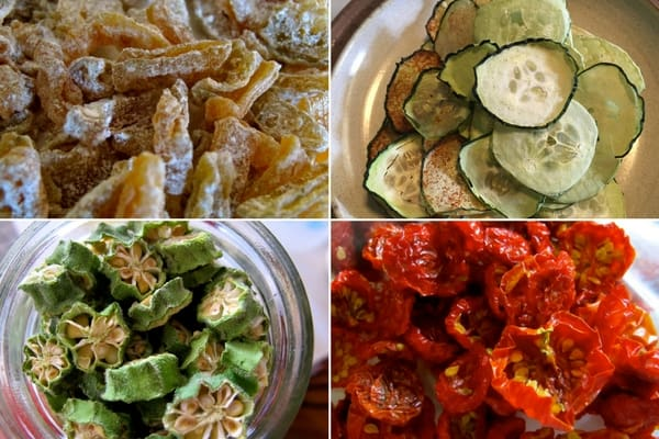 dehydrated foods- zucchini, cucumbers, okra, and tomatoes