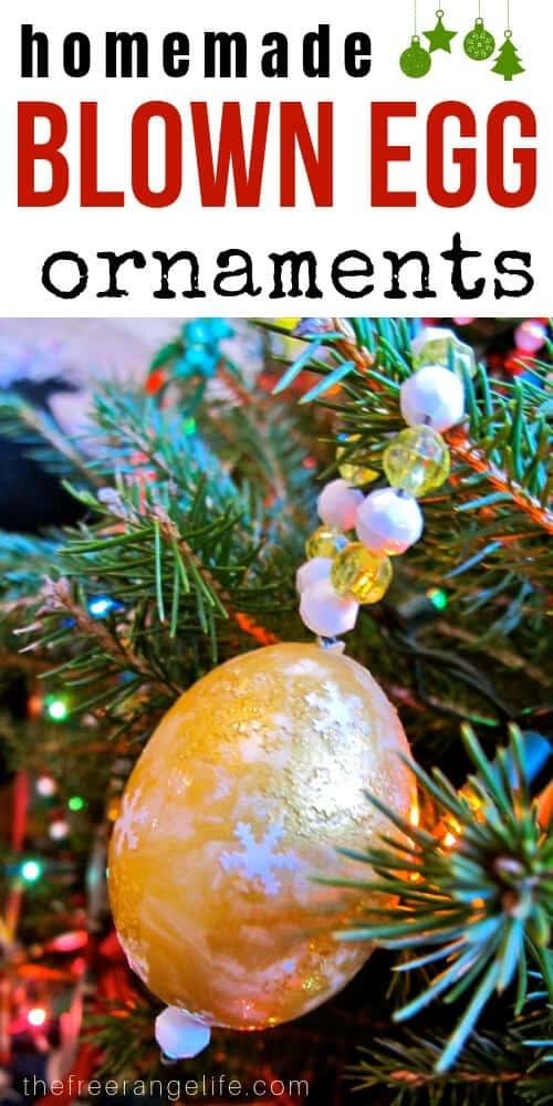 DIY Christmas Ornaments - Blown Egg Ornaments