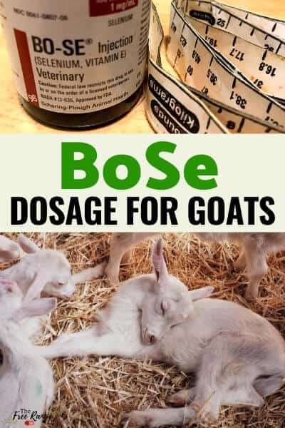 bose dosage for goats for selenium deficiency