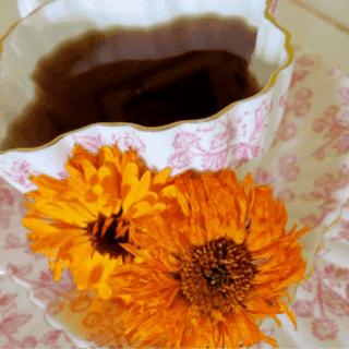 fresh calendula with calendula tea