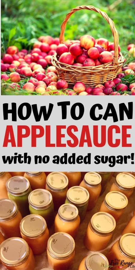 Canning Recipe: Learn how to make homemade applesauce- with no added sugar! Also includes instructions for canning applesauce in a water bath canner.