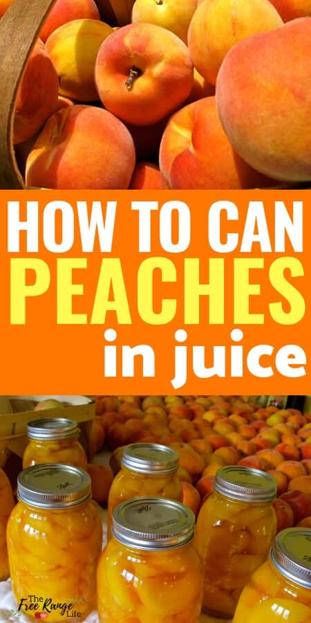 Canning Peaches | How to Can Peaches in Juice