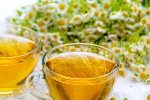 2 cups of chamomile tea