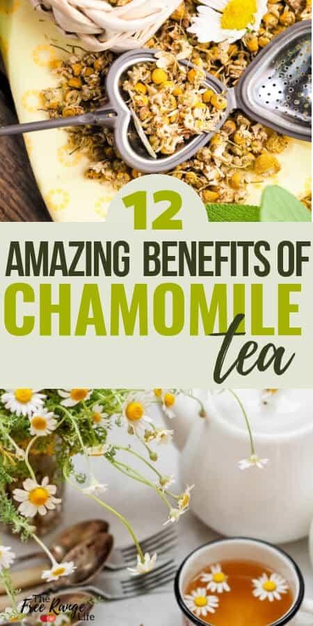 Natural and Herbal Health: Amazing benefits of chamomile tea