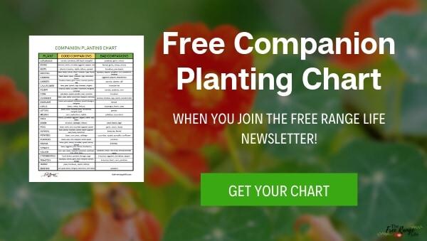 free companion planting chart