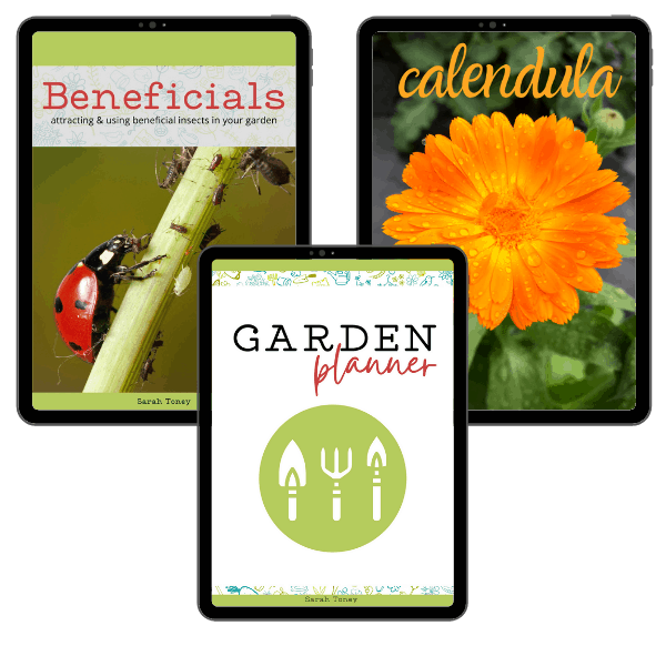 cover of bonus guides on beneficial insects, calendula, and garden planning