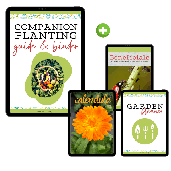 cover image of companion planting guide, garden planner, beneficial insects, and caledula