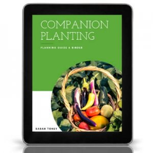 companion planting guide cover