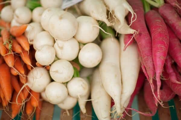 piles of carrots, radishes, and parsnips