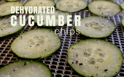 How to Make Cucumber Chips with 5 Different Flavor Options!