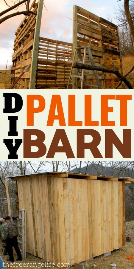 Pallet Projects: Learn how to make a pallet barn for your livestock using recycled wooden pallets