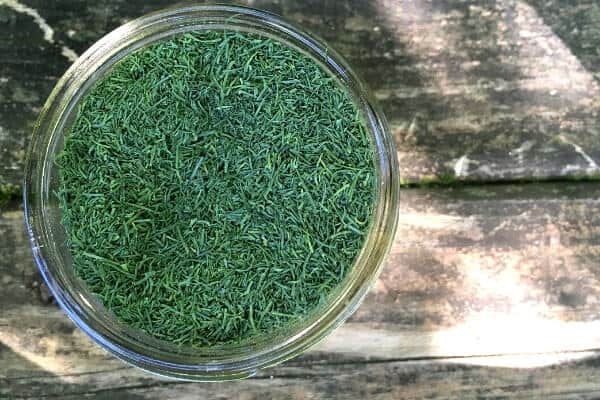 small mason jar filled with dried dill