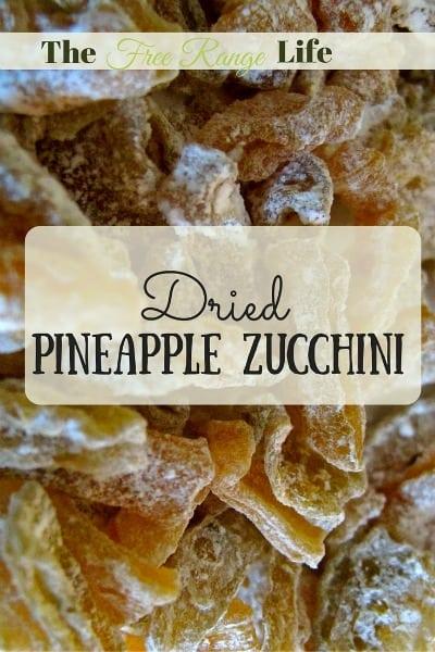 dried pineapple zucchini