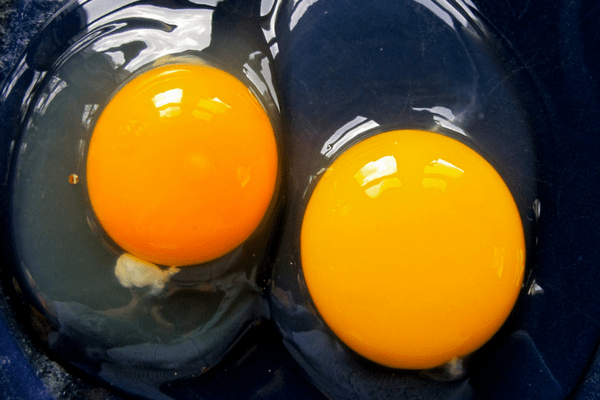 how to get clean duck eggs