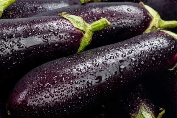 close up of dark purple eggplants with water dropplets