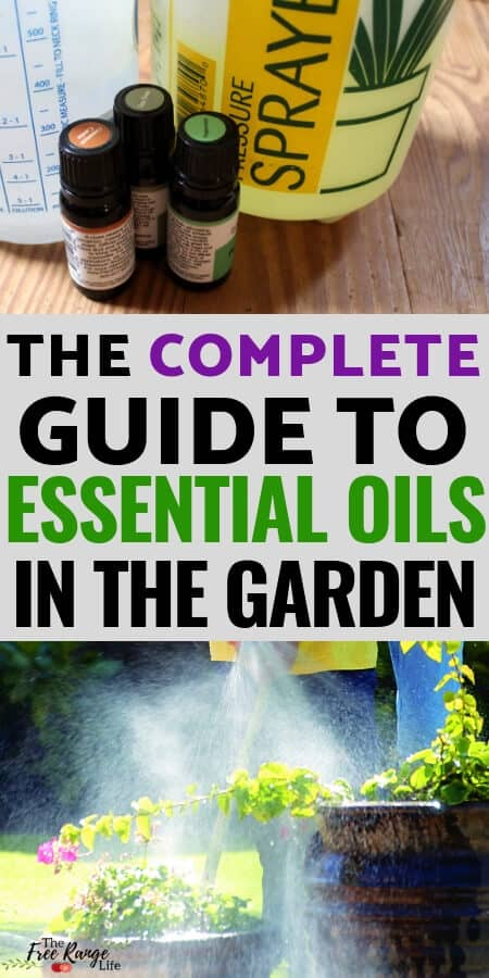 Organic Gardening: Did you know you can use essential oils to help your garden grow better? Learn how to use essential oils for gardening plus recipes to get you started!