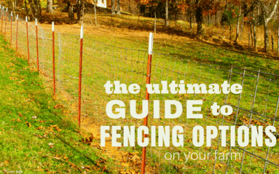 The Ultimate Guide to Fence Options of the Farm