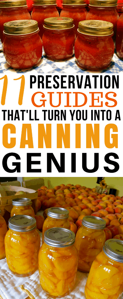 Are you wondering what to do with your garden harvest? Check out these 11 Food Preservation Guides- and you'll be a canning genius in no time!