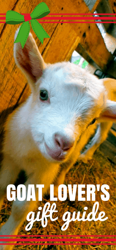 Need gift ideas for Goat Lovers? Here are 12 super cute gift ideas the crazy goat lady in your life is sure to love! Gift Guide | Goat Inspired Gift Ideas | Raising Goats
