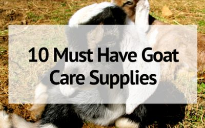 Must-Have Goat Care Supplies