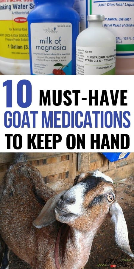 Raising Goats: Are you prepared if your goat gets sick? Get this list of medications you should always have on hand