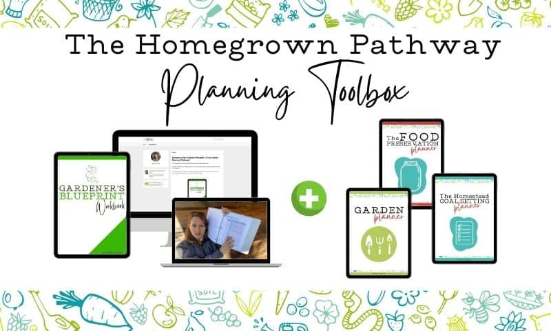 cover images of the homegrown pathway planning toolbox