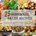 25 Homemade Salsa Recipes You Have to Try Today!