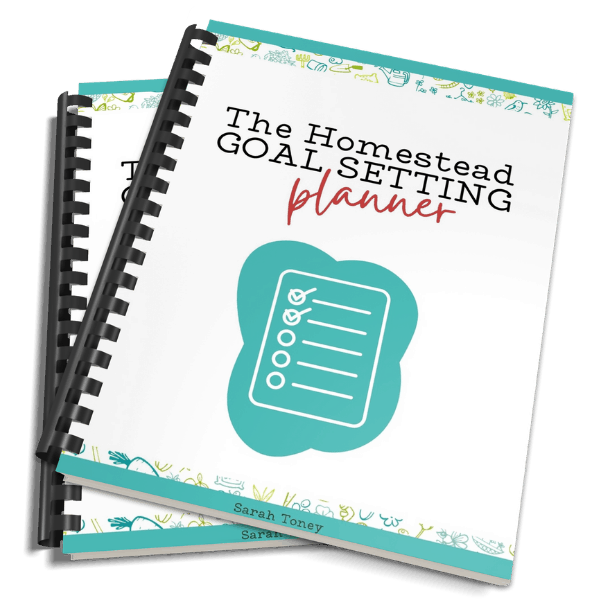 homestead goal planner book mock up in spiral