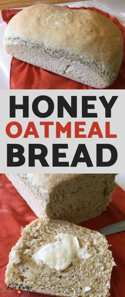 The BEST Homemade Bread recipe! This homemade honey oatmeal bread recipe will be a family favorite in no time!