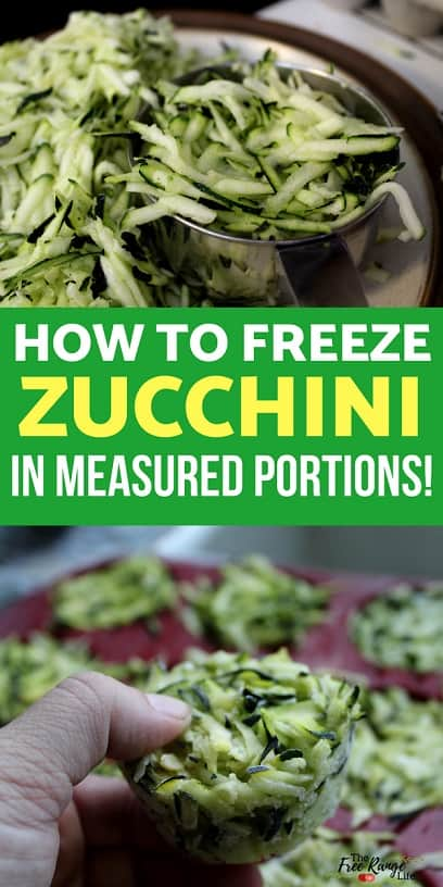 Food Preservation: Freezing zucchini is a great way to preserve your summer harvest. Learn how to freeze zucchini and my trick for easy measured portions!