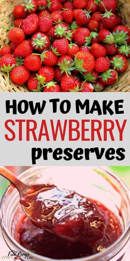 Food Preservation: Learn how to make your own strawberry preserves with this super simple strawberry preserves recipe (includes canning directions!)