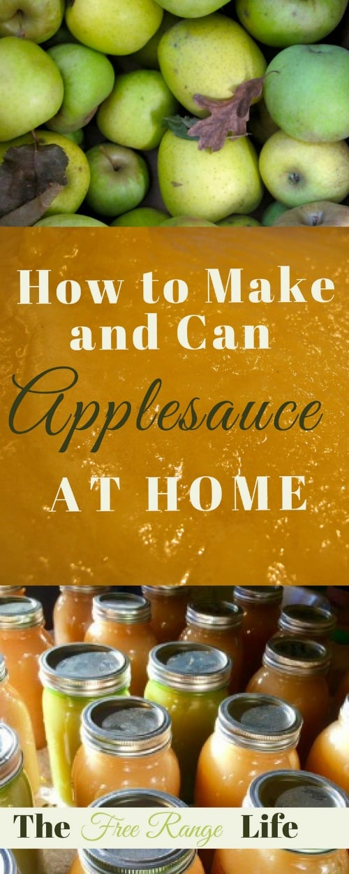 how-to-make-and-can-applesauce-at-home