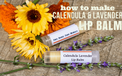 How to Make Calendula Lavender Lip Balm