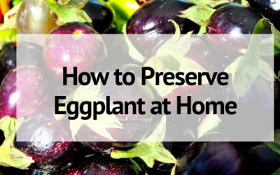 How to Preserve Eggplant