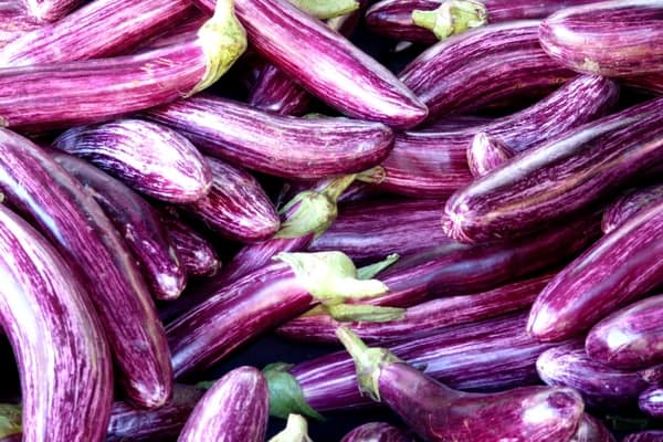 Learn how to store eggplant for the best results so that it keeps longer and retains quality.