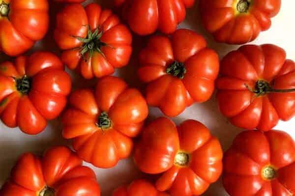 table full of Costoluto Florentino heirloom tomatoes