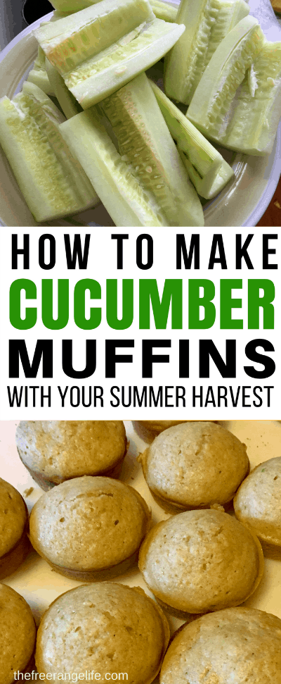 how to make cucumber muffins - How To Freeze Cucumbers