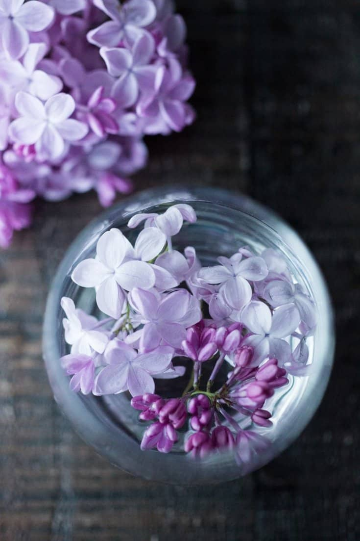 Lilac Water | Feasting At Home