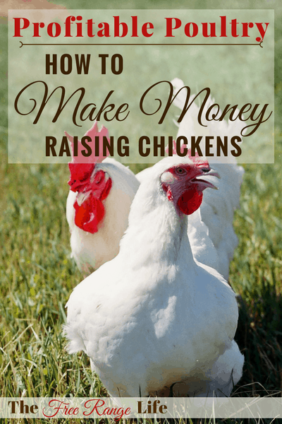 Profitable Poultry: Make Money Raising Chickens