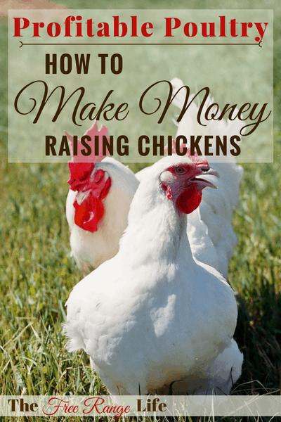 Profitable Poultry: Make Money Raising Chickens